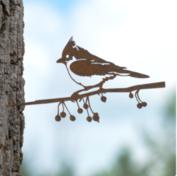 Metalbird - kuifmees