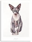 NAKED Kunstposter - kat