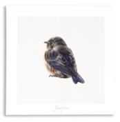 PURE Kunstposter - Vogeltje