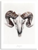 STRENGTH Kunstposter - Ram