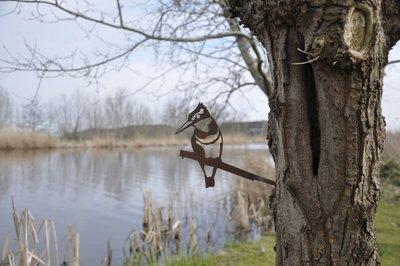 Metalbird - ijsvogel