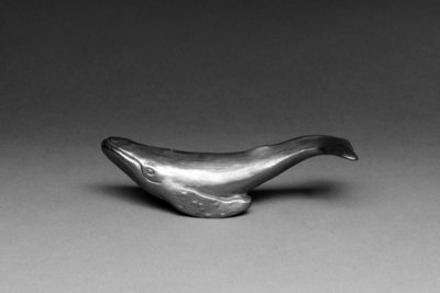 Small Whale in box