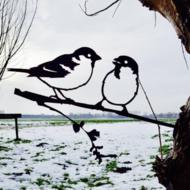 metalbird mus
