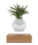 LYFE  - Zwevend plantenpotje